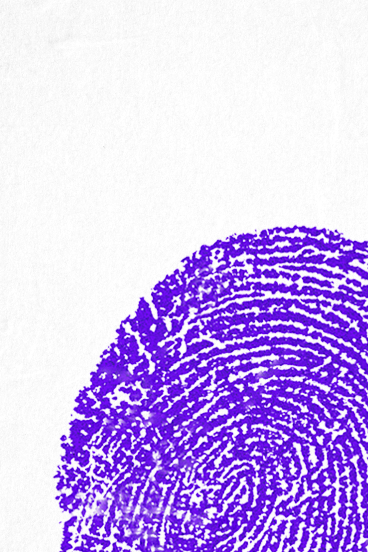 Illustration of fingerprints, colorful shapes made into animals with pen marks